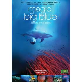 Discovery Magic of the Big Blue
