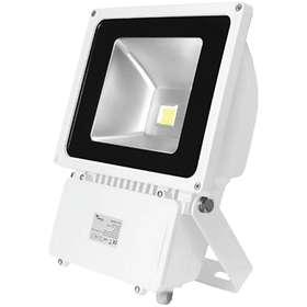 Lumineux Standard LED Floodlight (80W)