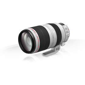 Canon EF 100-400/4,5-5,6 L IS USM