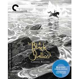 The Black Stallion - Criterion Collection (US)