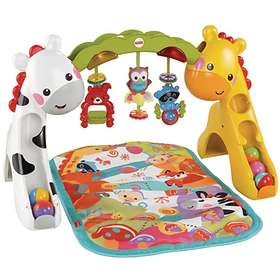 Fisher-Price Newborn-to-Toddler Babygym