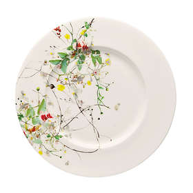 Rosenthal Selection Brillance Breakfast Plate With Wide Edge Ø19cm