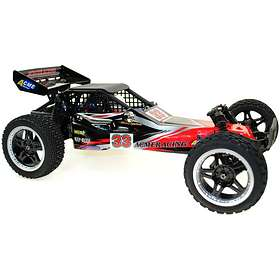 Acme Racing Flash Brushless Buggy RTR