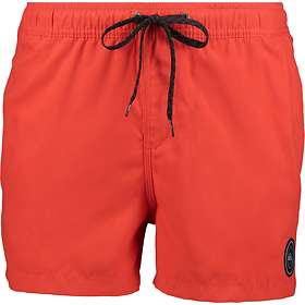 Quiksilver Everyday Solid Volley Boardshorts (Herr)