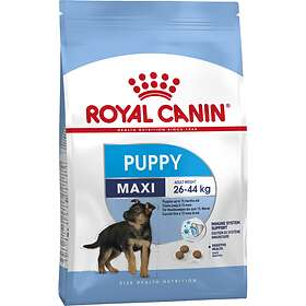 Royal Canin SHN Maxi Junior 4kg