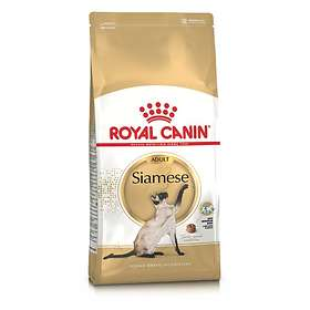 Royal Canin Breed Siamese 38 2kg
