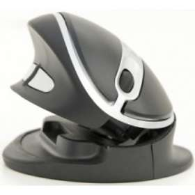 Kenson Oyster Wireless Mouse