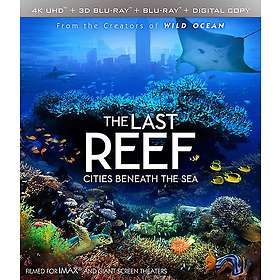 IMAX The Last Reef: Cities Beneath the Sea (3D) (US)