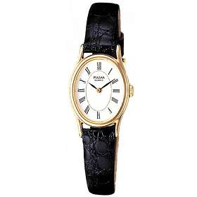 Pulsar Watches PPGD74