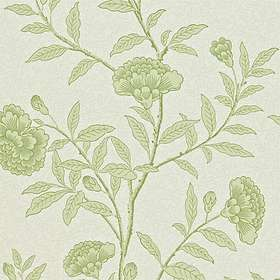 Sanderson Chinese Peony Pale Olive (DRCH212134)