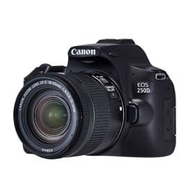 Canon EOS 250D + 18-55/4.0-5.6 IS STM