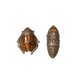 By On Bug Salt and Pepper Set