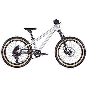 "Early Rider Hellion 20"" 2020"