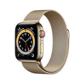 Apple Watch Series 6 44mm Stainless Steel with Sport Band