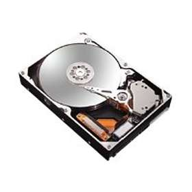 Maxtor Ultra16 Hard Drive Kit L14S250 16Mo 250Go