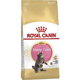 Royal Canin Breed Maine Coon 36 Kitten 10kg